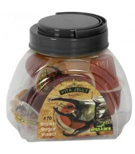 Gelée Hyper Protéiné sucre roux pour reptiles et Insectes
