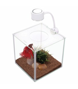 Marina Betta Kit Cubus