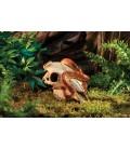 Decor Crane de Bison / Buffalo skull