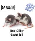 rat Ecopack rats + de 350g pour reptiles et serpents