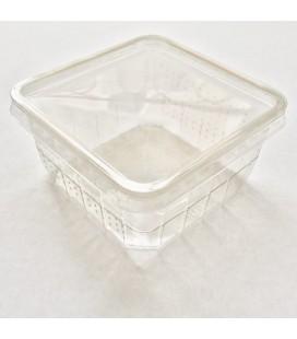 Boite de Grillons Vide Micro-perforée (unité)