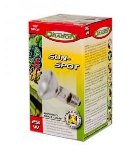 SUN SPOT 25W (DRAGON)