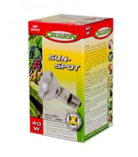 SUN SPOT 40W (DRAGON)