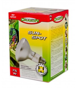 SUN SPOT 75W (DRAGON)
