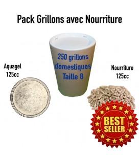 Pack grillons : 250 GRILLONS T8 XL + 1 Aquagel 125cc + 1 pot nourriture Grillons 125cc