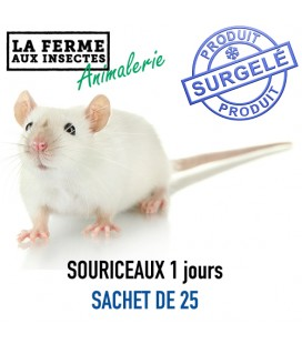 Pack souriceaux