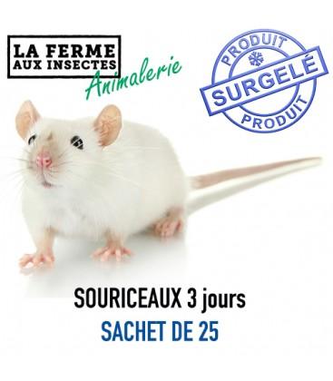 Ecopack Souriceaux 3 jours SACHET DE 25