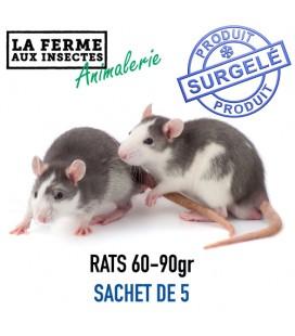 RATS 60-90g par 5