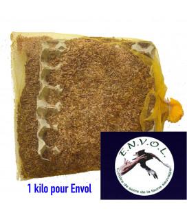 Don 1 kilo de vers de farine Pour l'association ENVOL