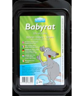Pack bébé rats