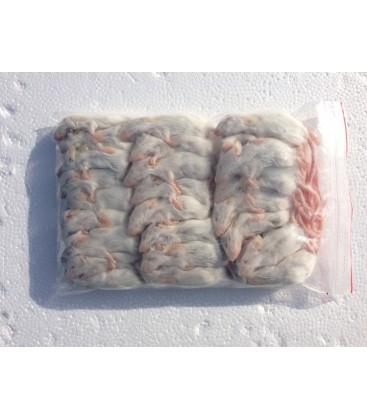sachet de 50 blanchons pour serpent et reptile