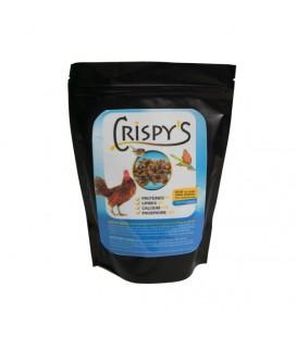Crispy's: Insectes friandises deshydratés