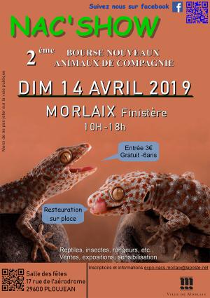 2019-04-14-2eme-nac-show-morlaix-300x300