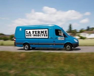 camion-express-300x300